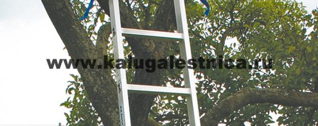 Односекционная приставная лестница с перекладинами