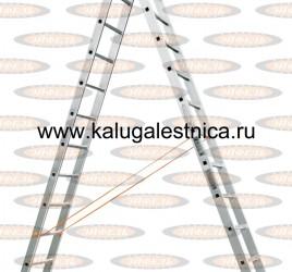 Двухсекционная лестница Классик 2х12