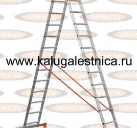 Двухсекционная лестница 2×14 Премьер