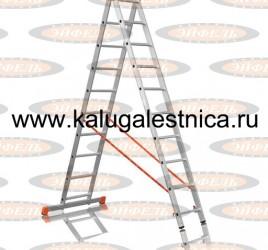 Двухсекционная лестница 2×10 Премьер