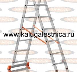 Двухсекционная лестница 2×7 Премьер