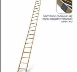 Лестница стеклопластиковая приставная составная ЛСПС «ЛУЧ»
