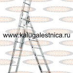 tl_3h11_yuvelir