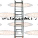 tl_uvelir_m_v_polozhenii_pristavnoi_lestnicy