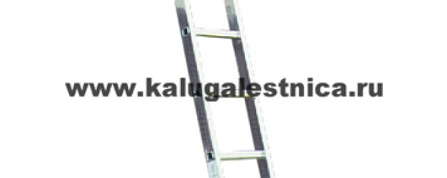Односекционная приставная лестница с перекладинами Sibilo