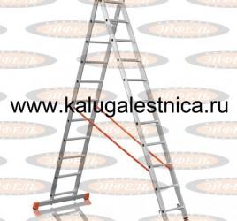 Двухсекционная лестница 2×11 Премьер