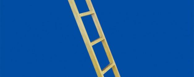 Лестницы стеклопластиковые приставные «Т» (для телекома) «ЛУЧ»